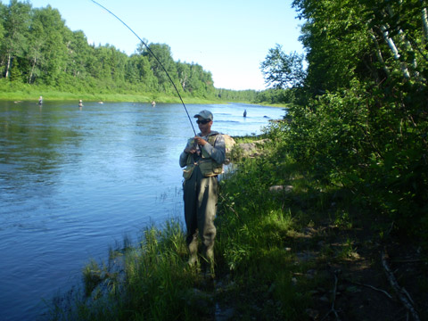 Stephen Miller hooks a 12 pound salmon on the Northwest Miramichi Monday, July 2, 2012.