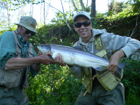 Stephen Miller lands a 12 pound salmon on the Northwest Miramichi Monday, July 2, 2012.
