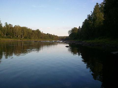 Renous River at Pineville