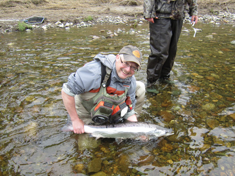36 Inch, 18.2 pound salmon caught by Hilaire Chiasson of Lamèque NB on the Northwest Miramichi using a Green Machine White Tail. Photo by René Ferron.