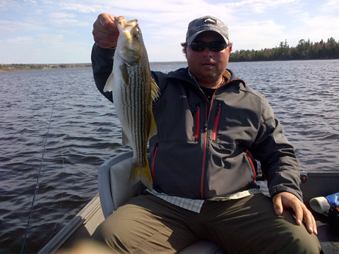 Bass caught by Derek Munn, one of the many landed on rabbit strips and marabou patterns.