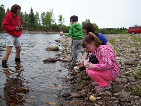 Napan youngsters releasing their Salmon Parr. Click the photo above to see more photos.