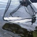 Dog Days Miramichi Salmon Report