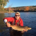 Miramichi Fishing Report for Thursday, October 13, 2016